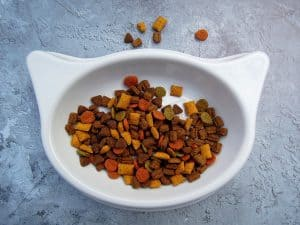 Best Dry Food For Cats With Kidney Disease